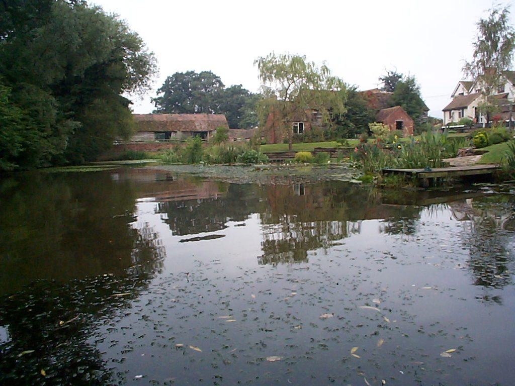 Established, well planted earth-based pond