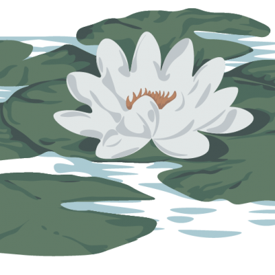 Gifts for pond lovers